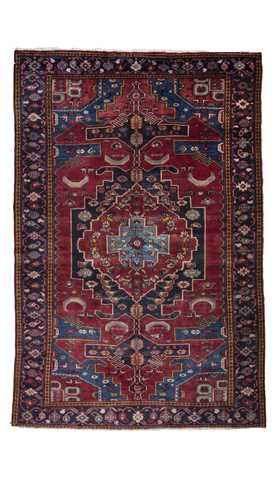 Decorative Persian Vis Carpet